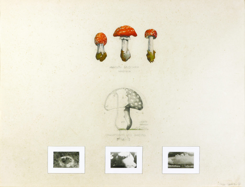 """Pierre Courtois · """"Les thallophyles"""" · Technique mixte · 58 x 73 cm · 1977"""