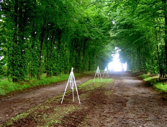 Pierre Courtois - Obscure clarté – installations in situ dans le parc du Château de Jehay (BE) - 2006