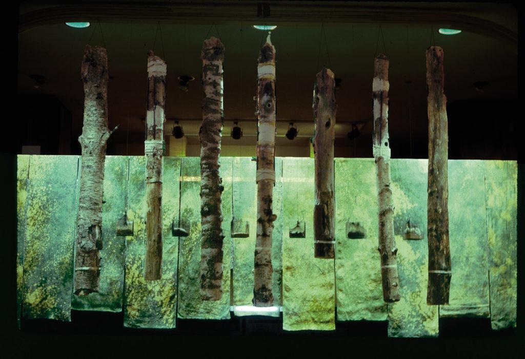 """Pierre Courtois · """"Commedia della natura"""" · Installation - Musée des sciences naturelles de Belgique ·300 x 6OO cm · 1985"""
