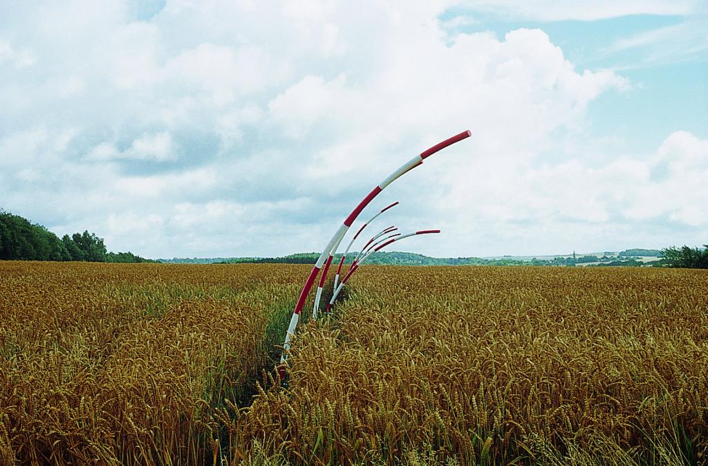 Pierre Courtois - L'esprit farceur – Installation jardin de l'atelier, Sorinne-la-Longue (B) - 2002
