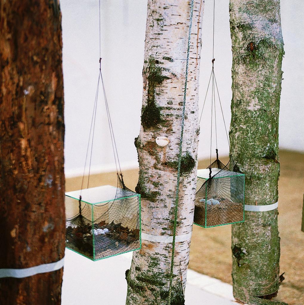 """Pierre Courtois · """"Commedia della natura"""" · Installation Musée des sciences naturelles de Belgique ·Détail · 1985"""